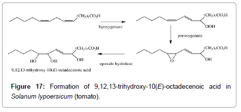 medicinal-chemistry-octadecenoic