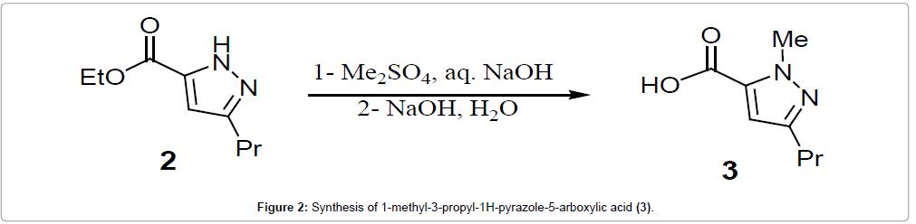 medicinal-chemistry-pyrazole
