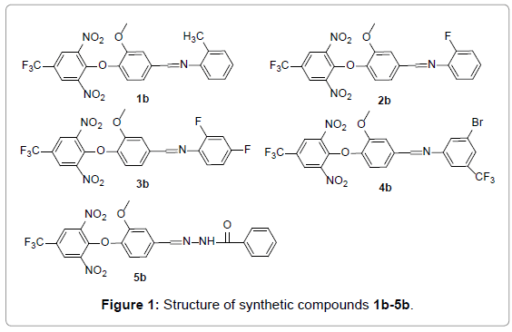 medicinal-chemistry-synthetic-compounds