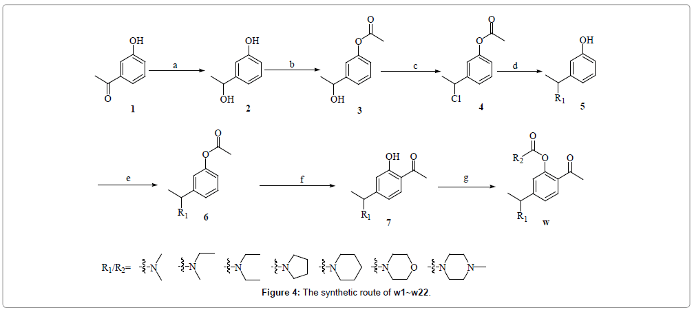 medicinal-chemistry-synthetic-route