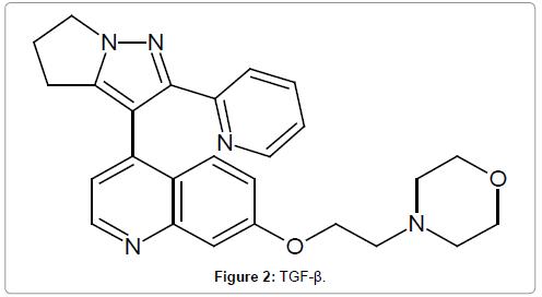 medicinal-chemistry-tgf