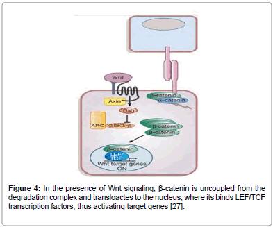 medicinal-chemistry-transcription