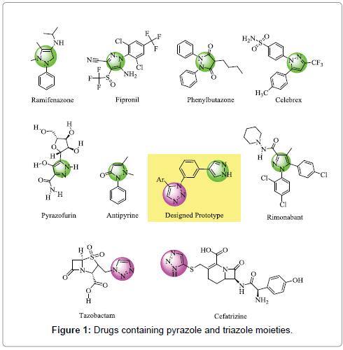 medicinal-chemistry-triazole-moieties