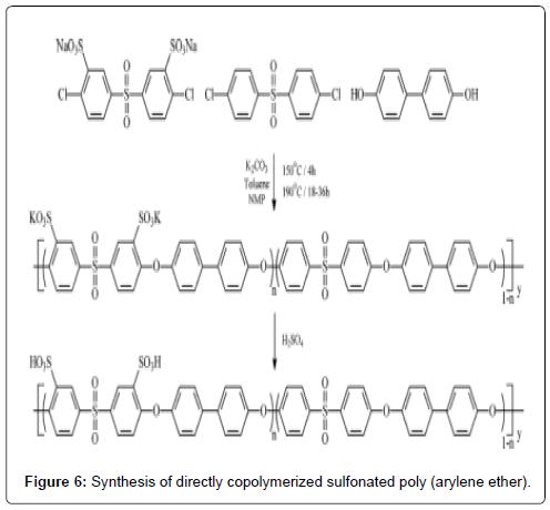 membrane-science-technology-copolymerized