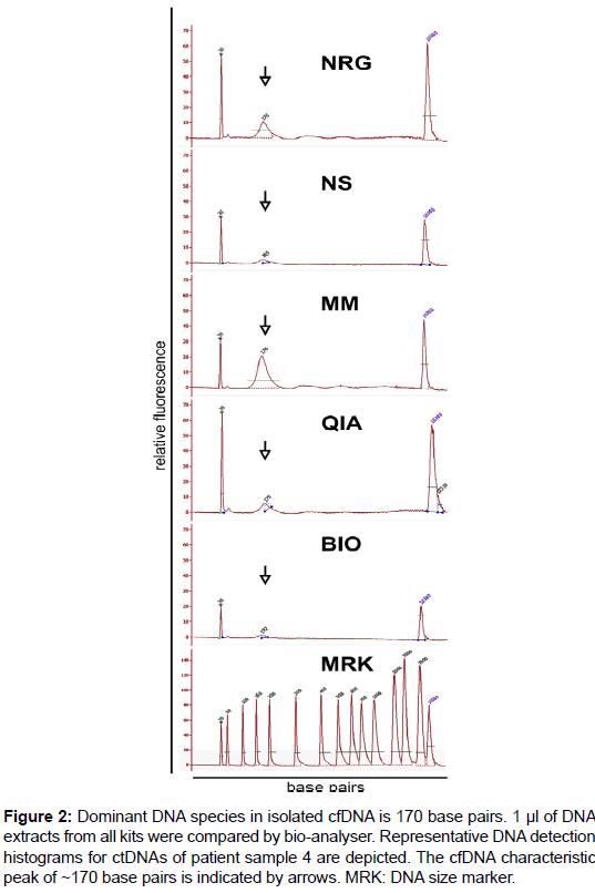 molecular-biomarkers-diagnosis-DNA-size-marker