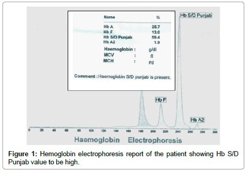 molecular-biomarkers-diagnosis-electrophoresis-report