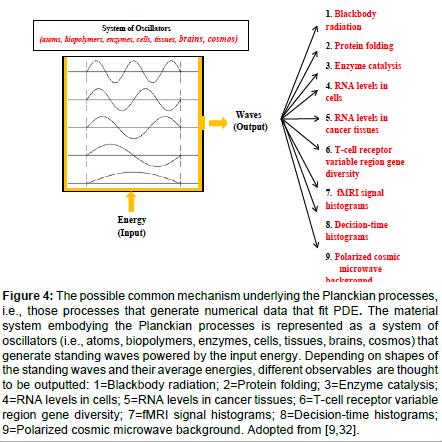 molecular-genetic-medicine-Planckian-processes