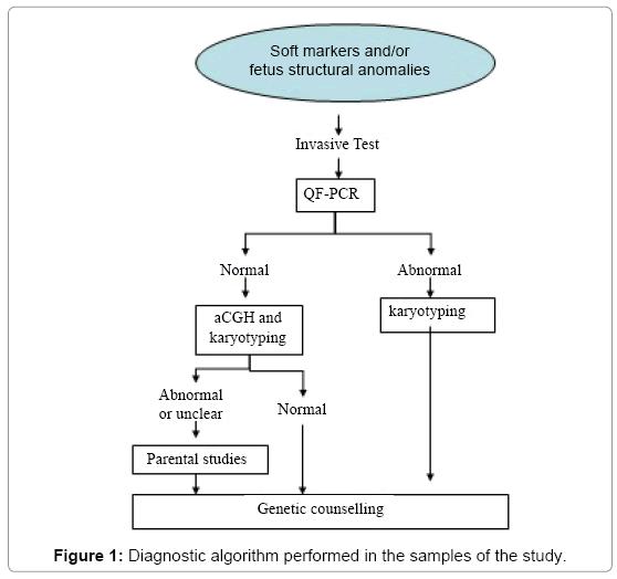 molecular-genetic-medicine-algorithm-performed
