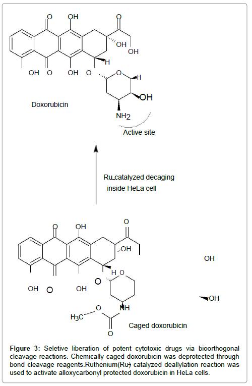 molecular-genetic-medicine-cytotoxic