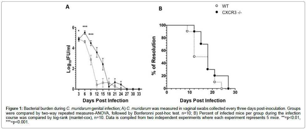 mucosal-immunology-research-Bacterial-burden