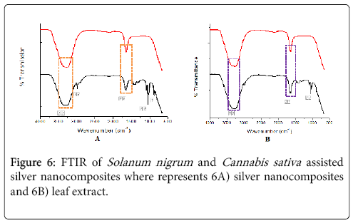 nano-sciences-current-research-sativa
