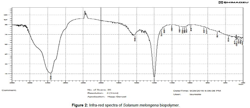 nanomedicine-biotherapeutic-discovery-Solanum-melongena-biopolymer