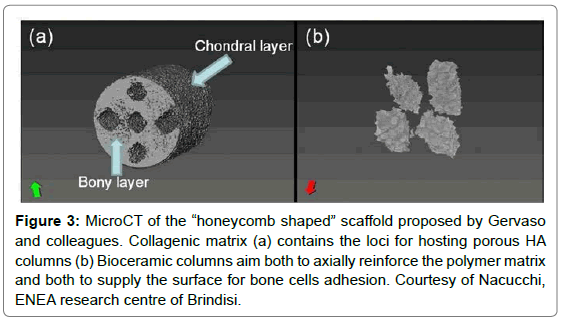 nanomedicine-nanotechnology-honeycomb-shaped-scaffold