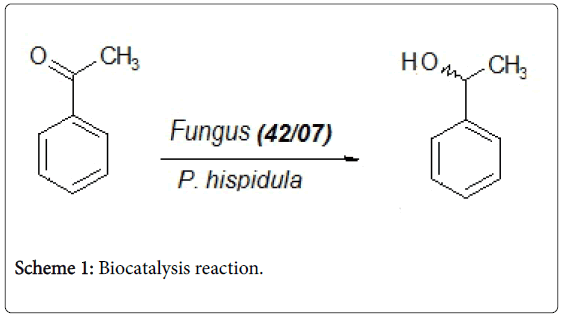 natural-products-chemistry-Biocatalysis