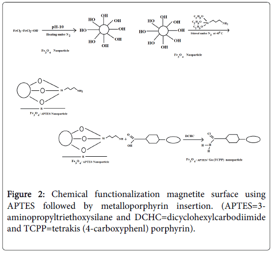 natural-products-chemistry-Chemical-functionalization
