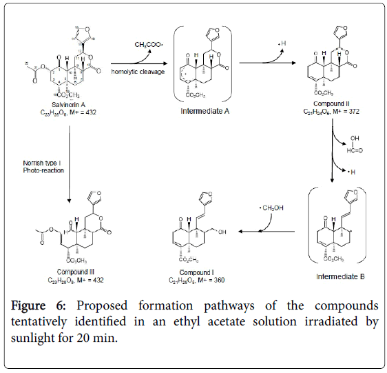 natural-products-chemistry-Proposed-formation