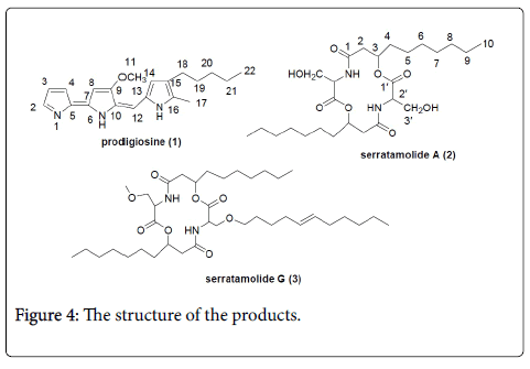 natural-products-chemistry-structure