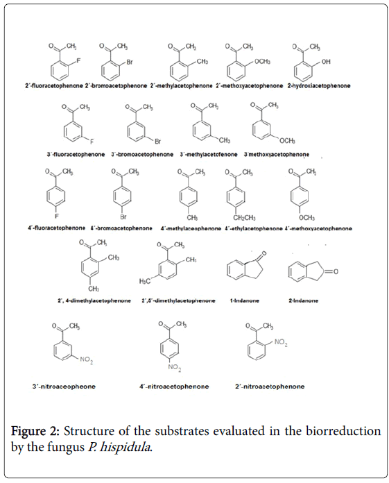 natural-products-chemistry-substrates-evaluated