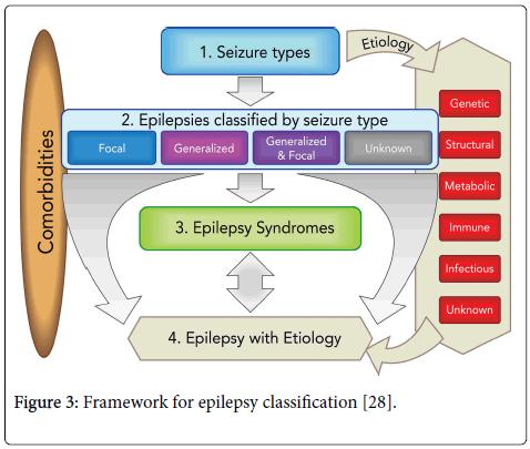 neurology-neurophysiology-Framework-epilepsy