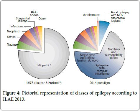 neurology-neurophysiology-Pictorial-representation
