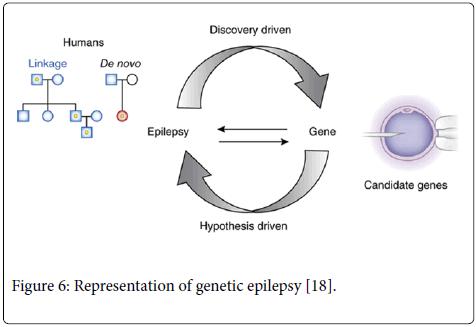 neurology-neurophysiology-genetic-epilepsy