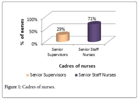nursing-care-Cadres-nurses