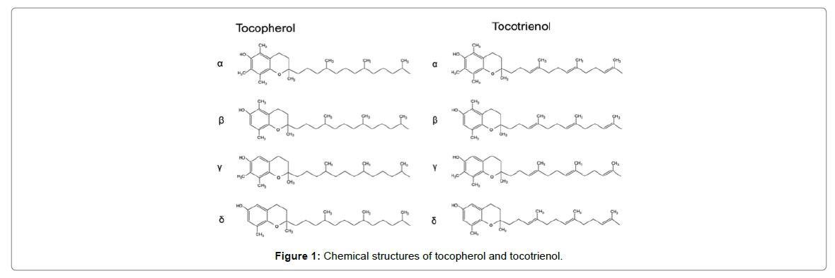 nutrition-food-sciences-structures-tocopherol