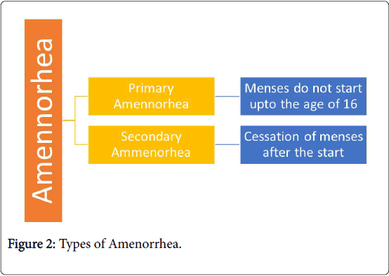 obesity-weight-loss-therapy-Types-Amenorrhea