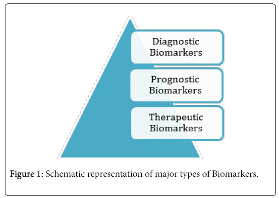 oncology-research-major-types-biomarkers