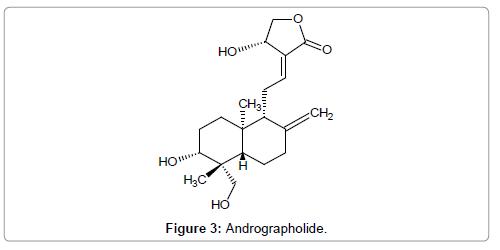 organic-chemistry-andrographolide