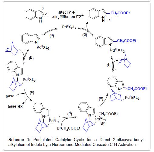 organic-chemistry-catalytic
