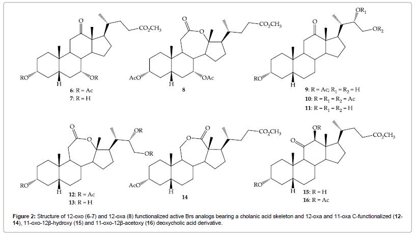 organic-chemistry-cholanic
