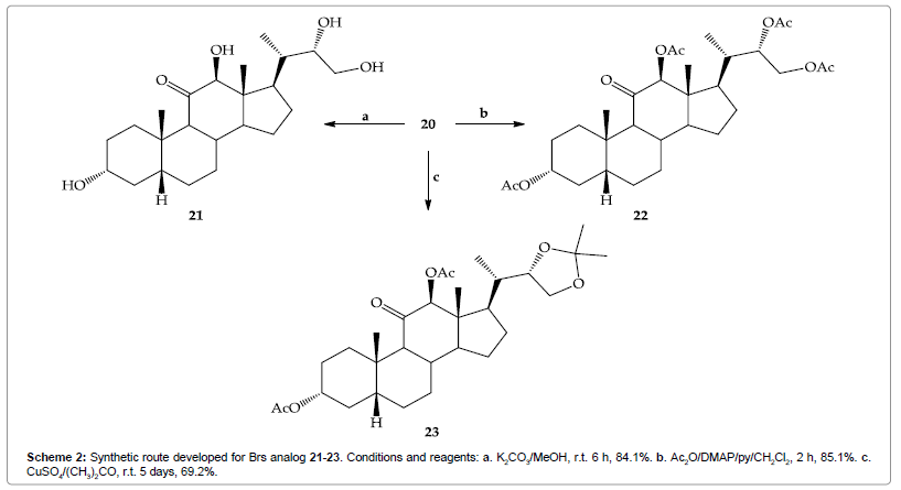 organic-chemistry-route