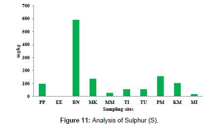 petroleum-environmental-biotechnology-Analysis-Sulphur
