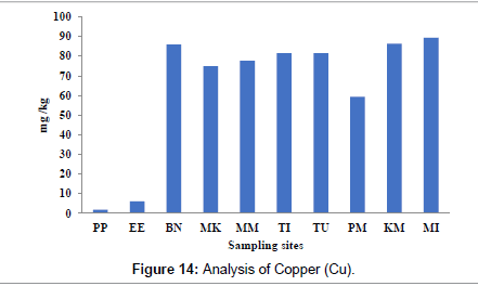 petroleum-environmental-biotechnology-Copper
