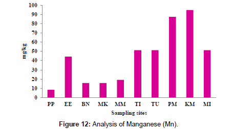 petroleum-environmental-biotechnology-Manganese
