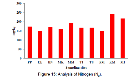 petroleum-environmental-biotechnology-Nitrogen