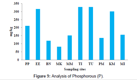 petroleum-environmental-biotechnology-Phosphorous