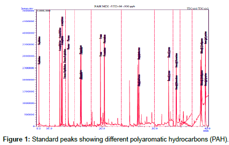 petroleum-environmental-biotechnology-Standard-peaks