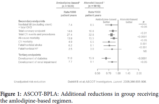 pharmaceutical-regulatory-affairs-amlodipine-based-regimen