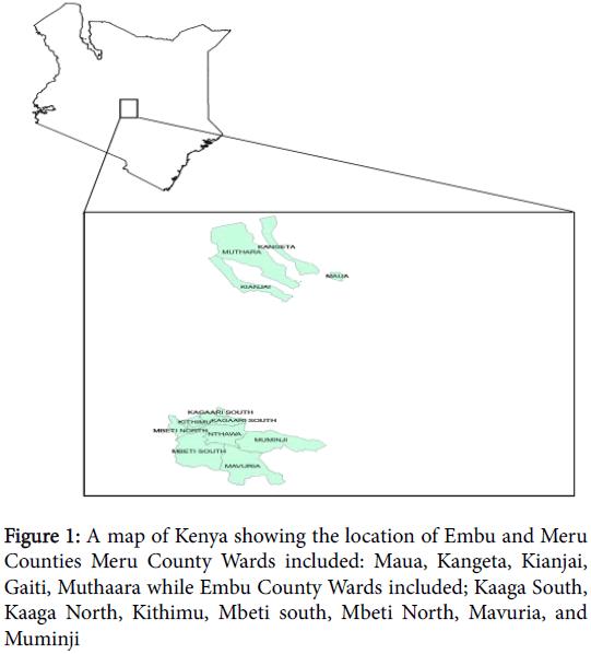 phylogenetics-evolutionary-biology-Mbeti-North