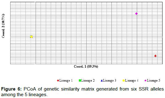 phylogenetics-evolutionary-biology-PCoA-genetic