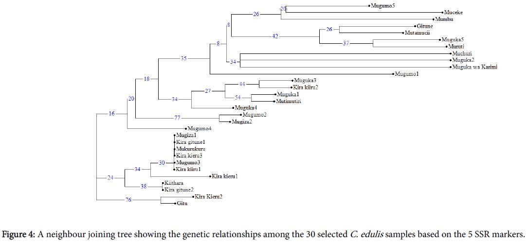 phylogenetics-evolutionary-biology-genetic-relationships