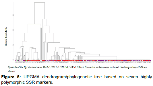 phylogenetics-evolutionary-biology-phylogenetic-tree