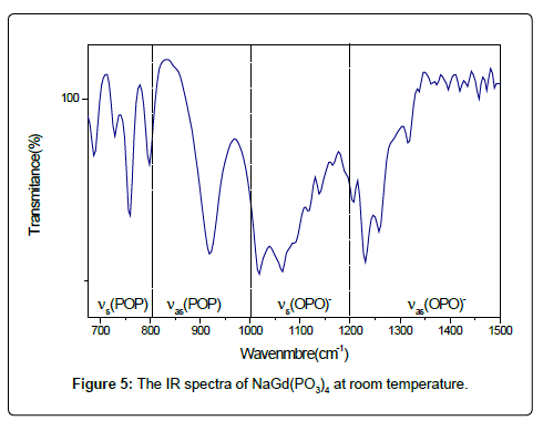 physical-chemistry-biophysics-IR-spectra