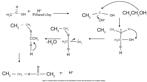 physical-chemistry-biophysics-Possible-reaction