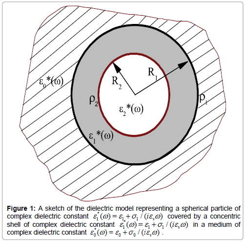 physical-chemistry-biophysics-dielectric-model