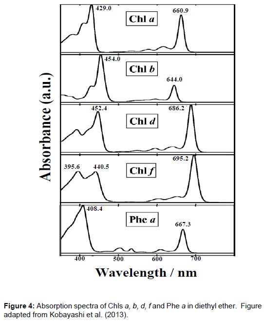 physical-chemistry-biophysics-diethyl-ether
