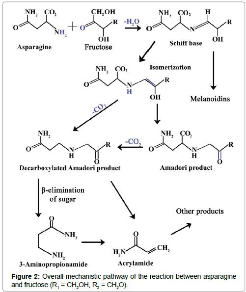physical-chemistry-biophysics-mechanistic-pathway
