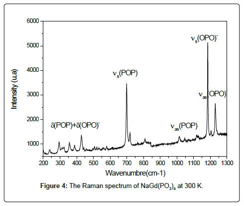 physical-chemistry-biophysics-raman-spectrum